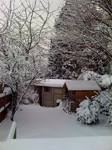 Garden in Winter. Save a Tree - Choose Parax Stone Paper