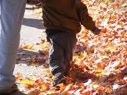 kid playing in autumn leaves
