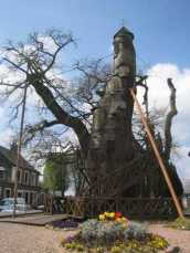 The Chapel Tree