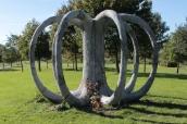 Stunning-Art-of-Arborsculpture-3